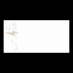 Kerst Envelop Goudfolie Vuurwerk 11x22 cm