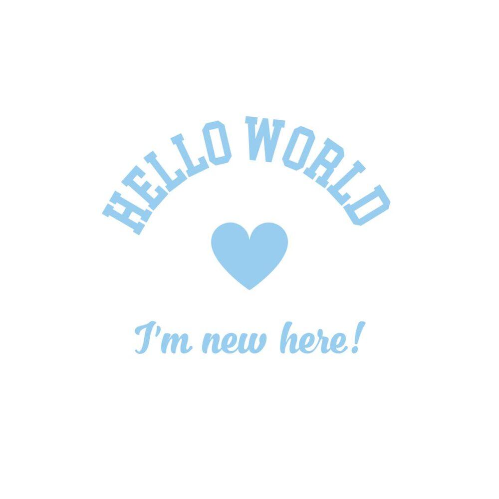 Sluitzegel Hello World Jongen